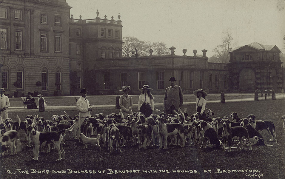 The Beaufort hounds at Badminton House