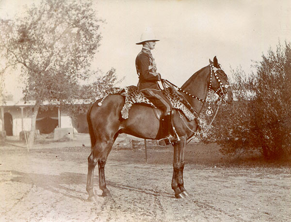 Lieutenant Victor John Greenwood and his mount in parade regalia