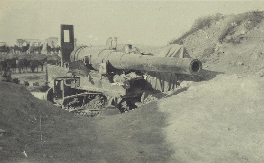 A Turkish gun