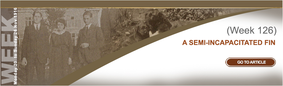 Monday 20 to Sunday 26 November 1916